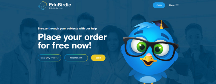Review of EduBirdie.com