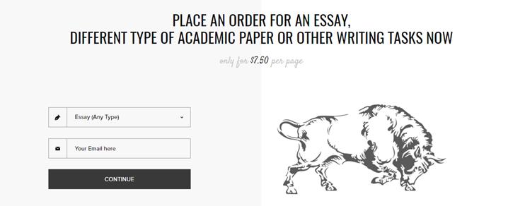 Review of EssayBison.com Writing Services