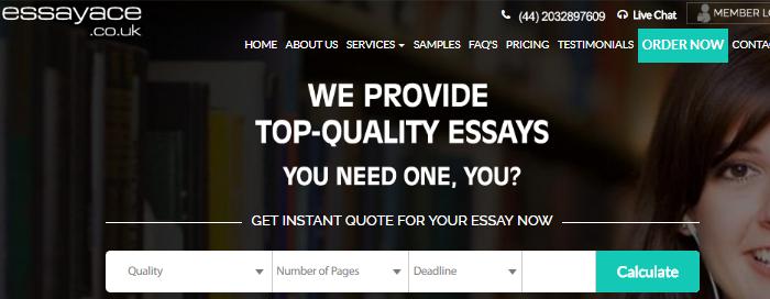 Review of EssayAce.co.uk Writing Service